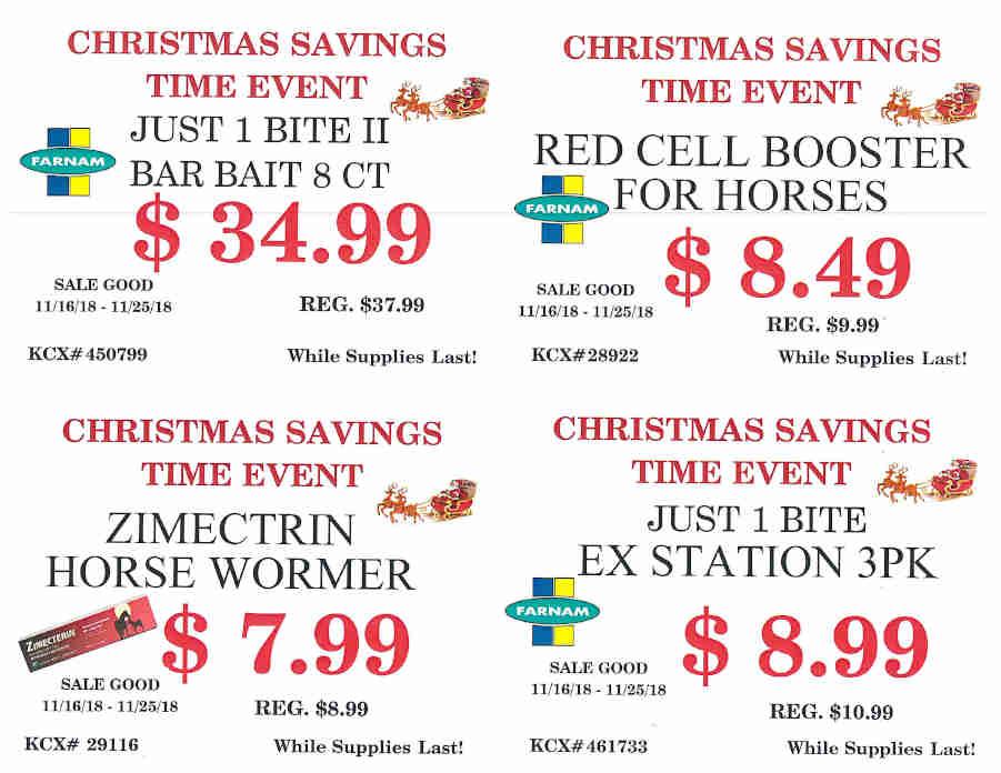 CHRISTMAS SAVINGS TIME EVENT